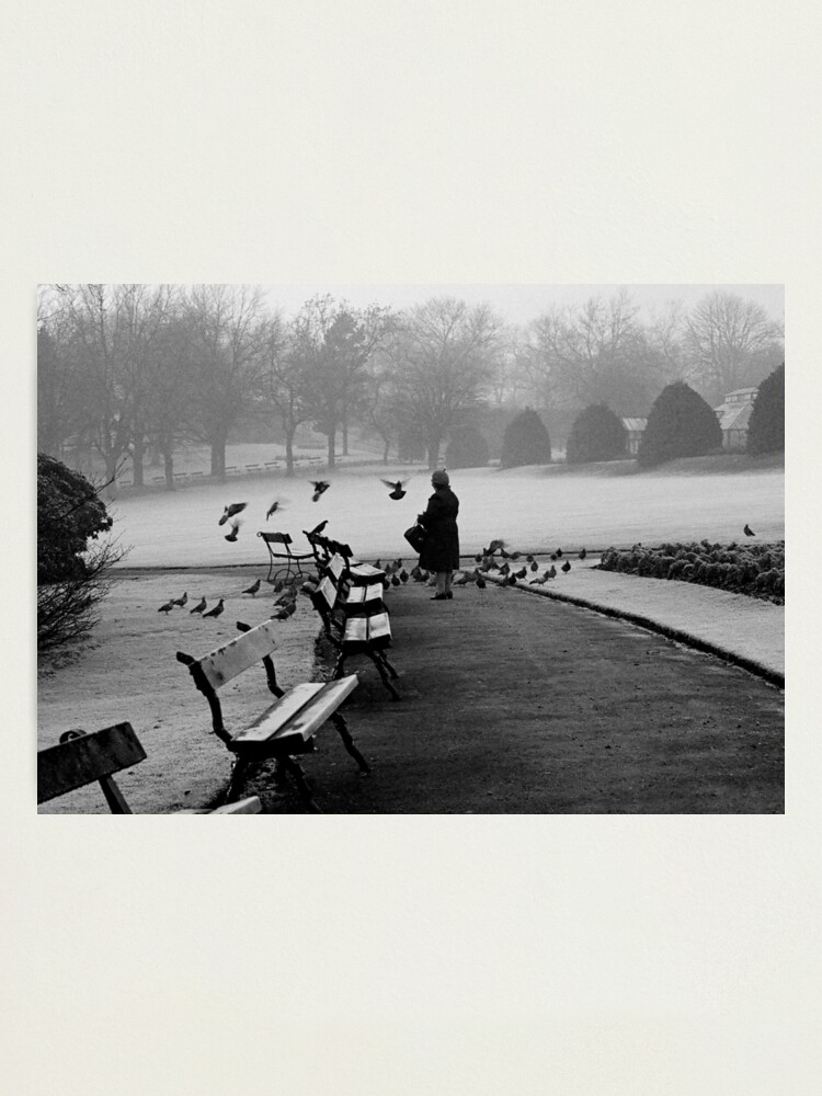Alternate view of Shy woman feeding pigeons Photographic Print
