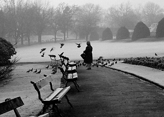 Shy woman feeding pigeons by Duncan Waldron