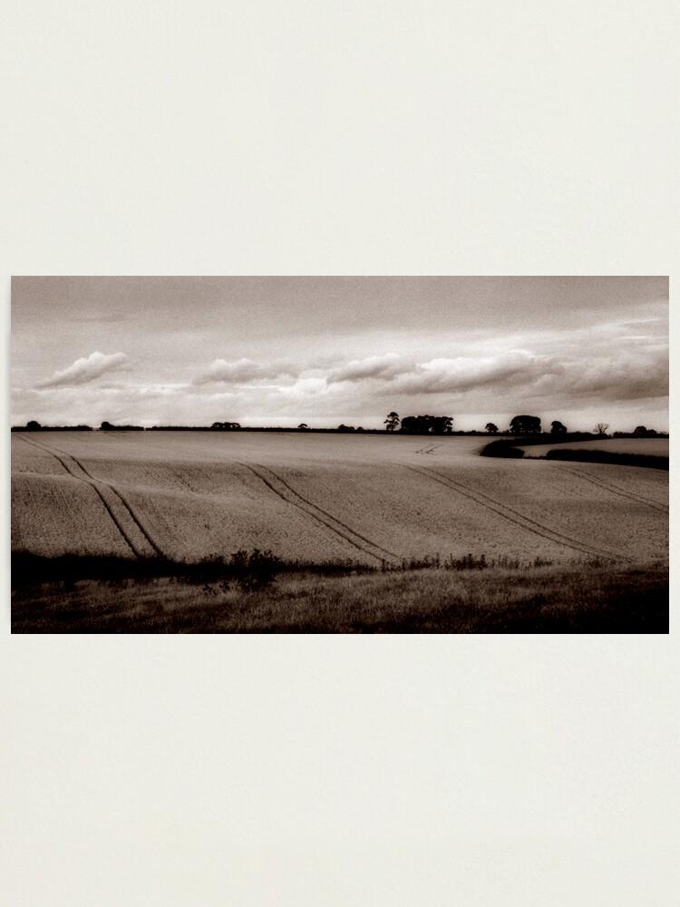 Alternate view of Ripening harvest Photographic Print