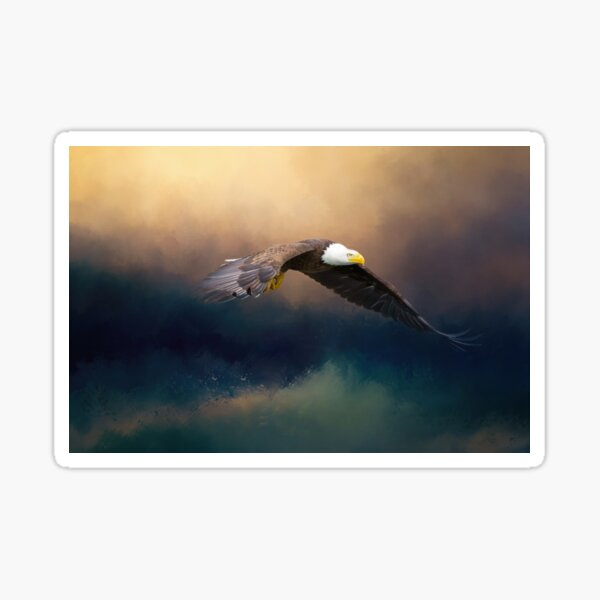 Painting flying american bald eagle Sticker