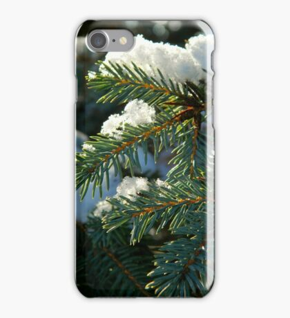 The first snow of winter iPhone Case/Skin