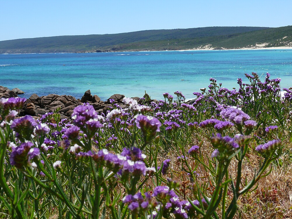flowers and surf by timmotholden