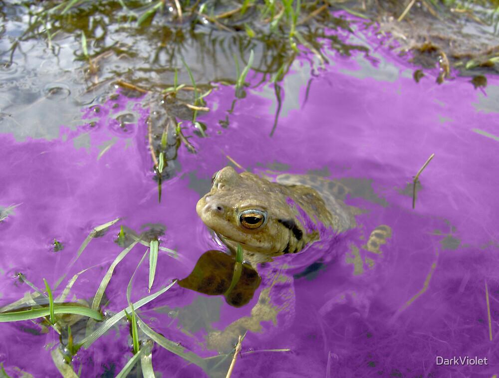 Purple frog by DarkViolet