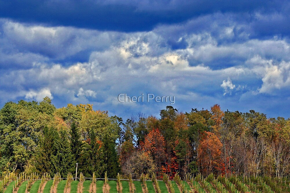 God's Painting II by Cheri Perry