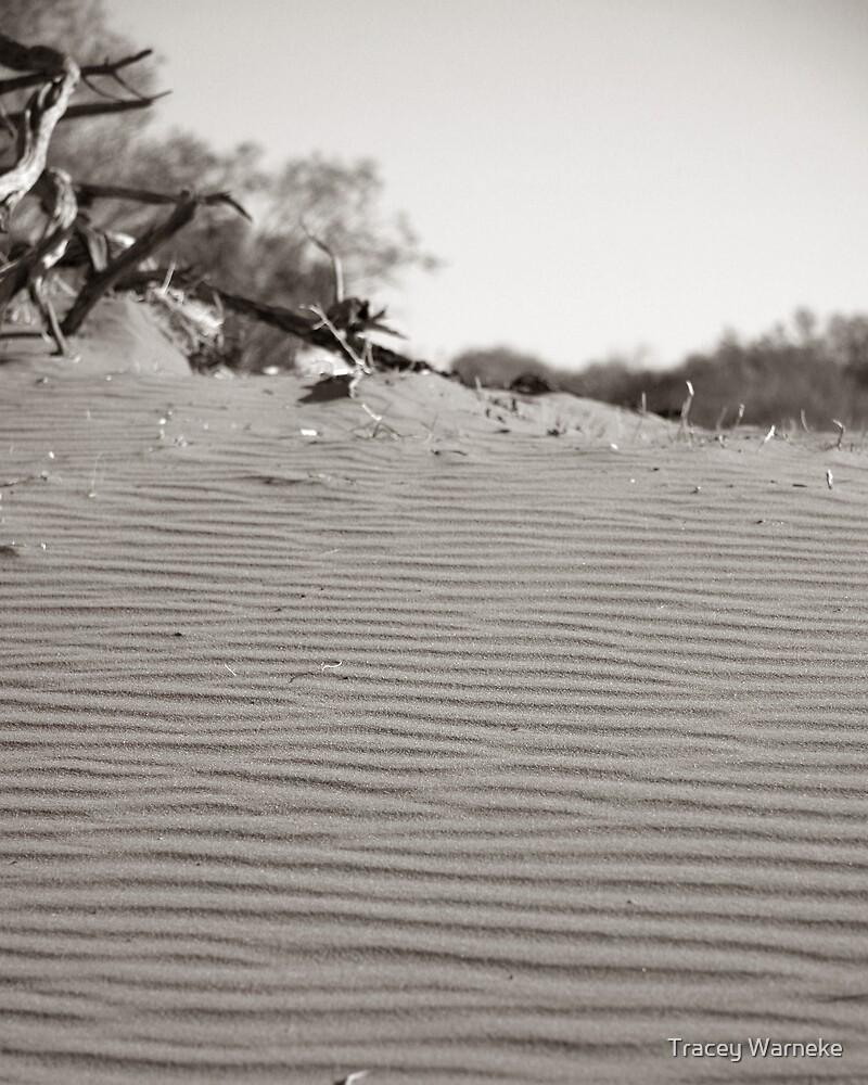 Dunes by Tracey Warneke