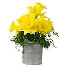 Daffodil Bouquet by Maria Dryfhout