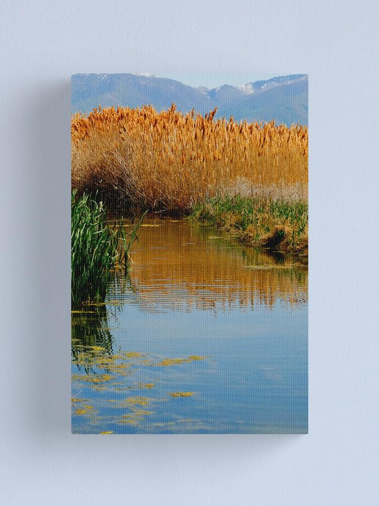 Alternate view of The Wetlands run through Me Canvas Print