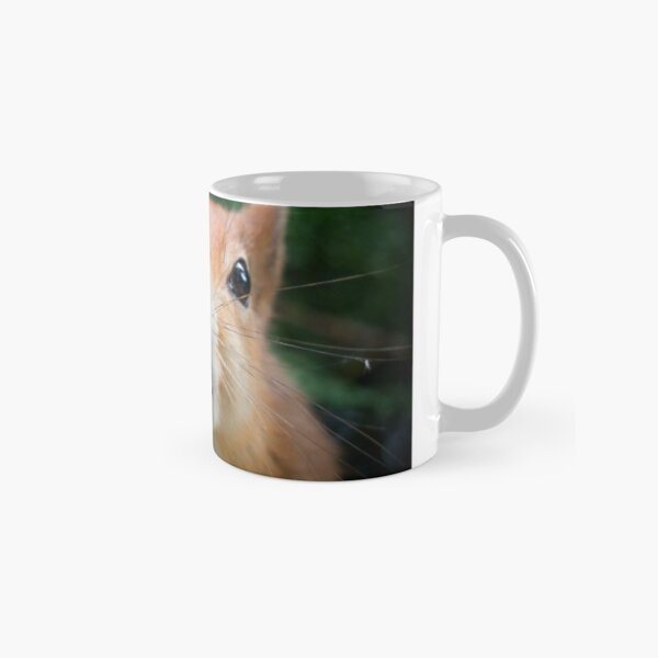 Squirrel all up in your face Classic Mug