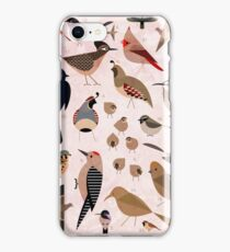 Sonoran Birds iPhone Case/Skin