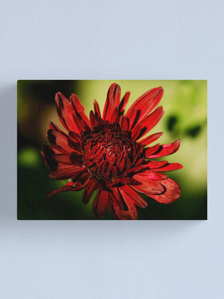 Alternate view of Dusty Red Canvas Print