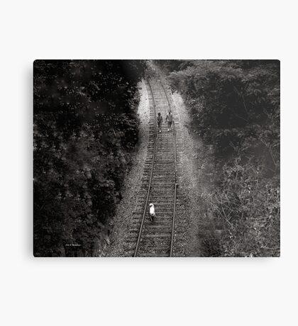 Journey Metal Print