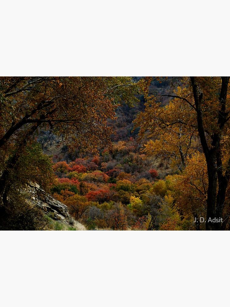 Eden in Autumn by adsitprojectpro