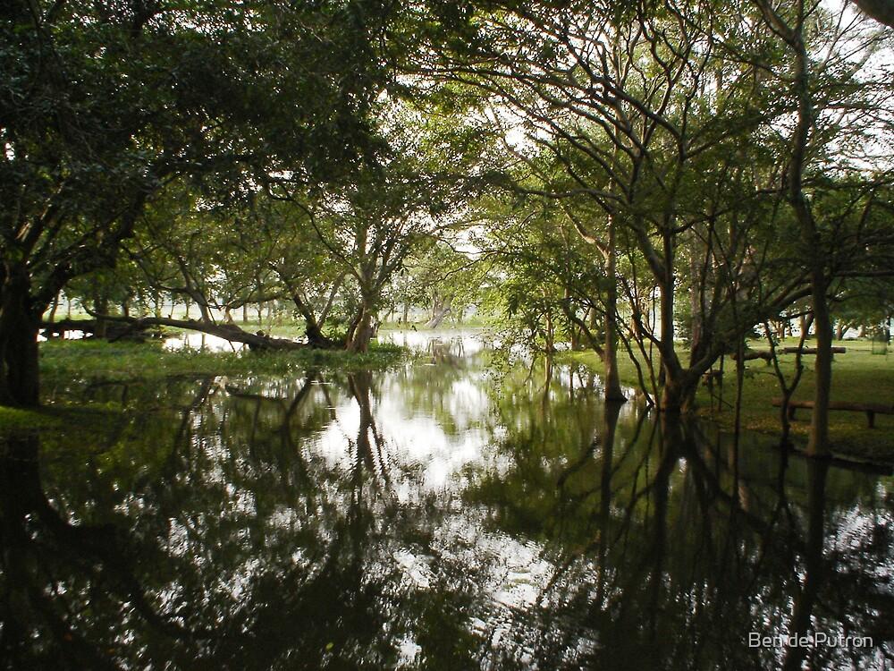 Harabana Sri Lanka by Ben de Putron