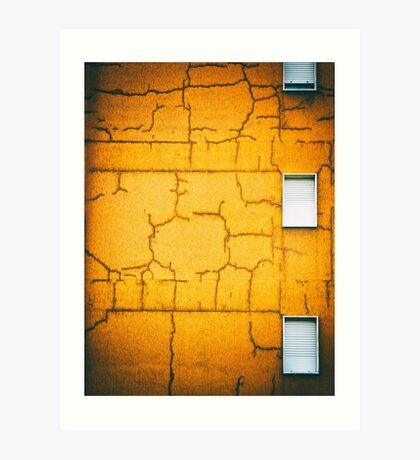 White shutters Art Print