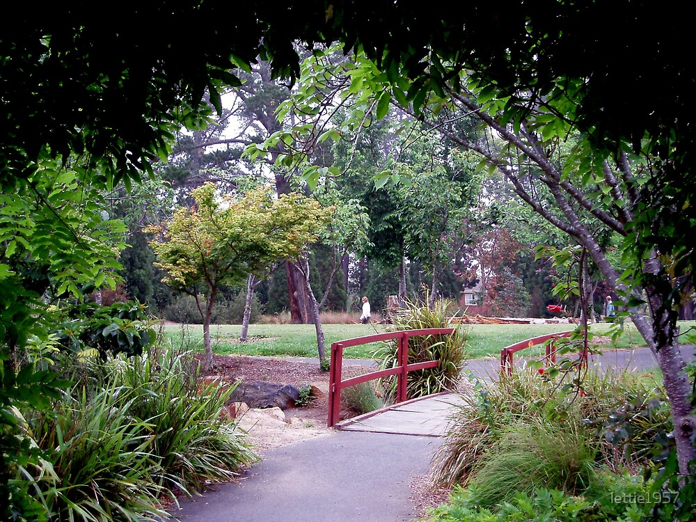 Entrance to McAlpine Reserve by lettie1957