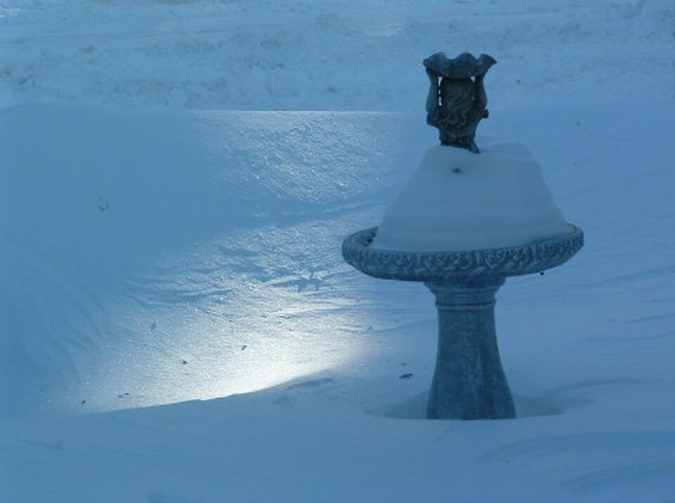 Snowdrift by Kimberly Sharpe