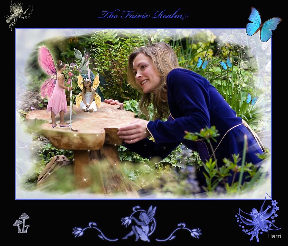 The Fairy Realm by Harri