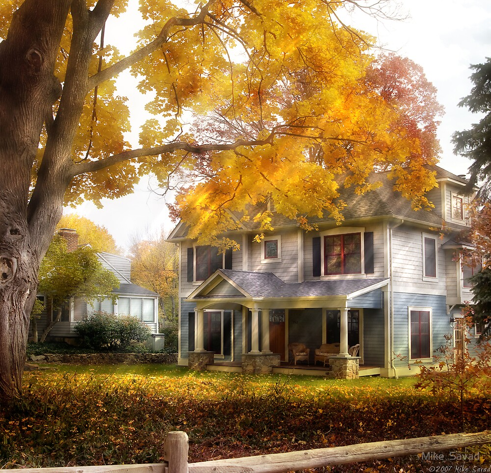 The cottage by Mike  Savad