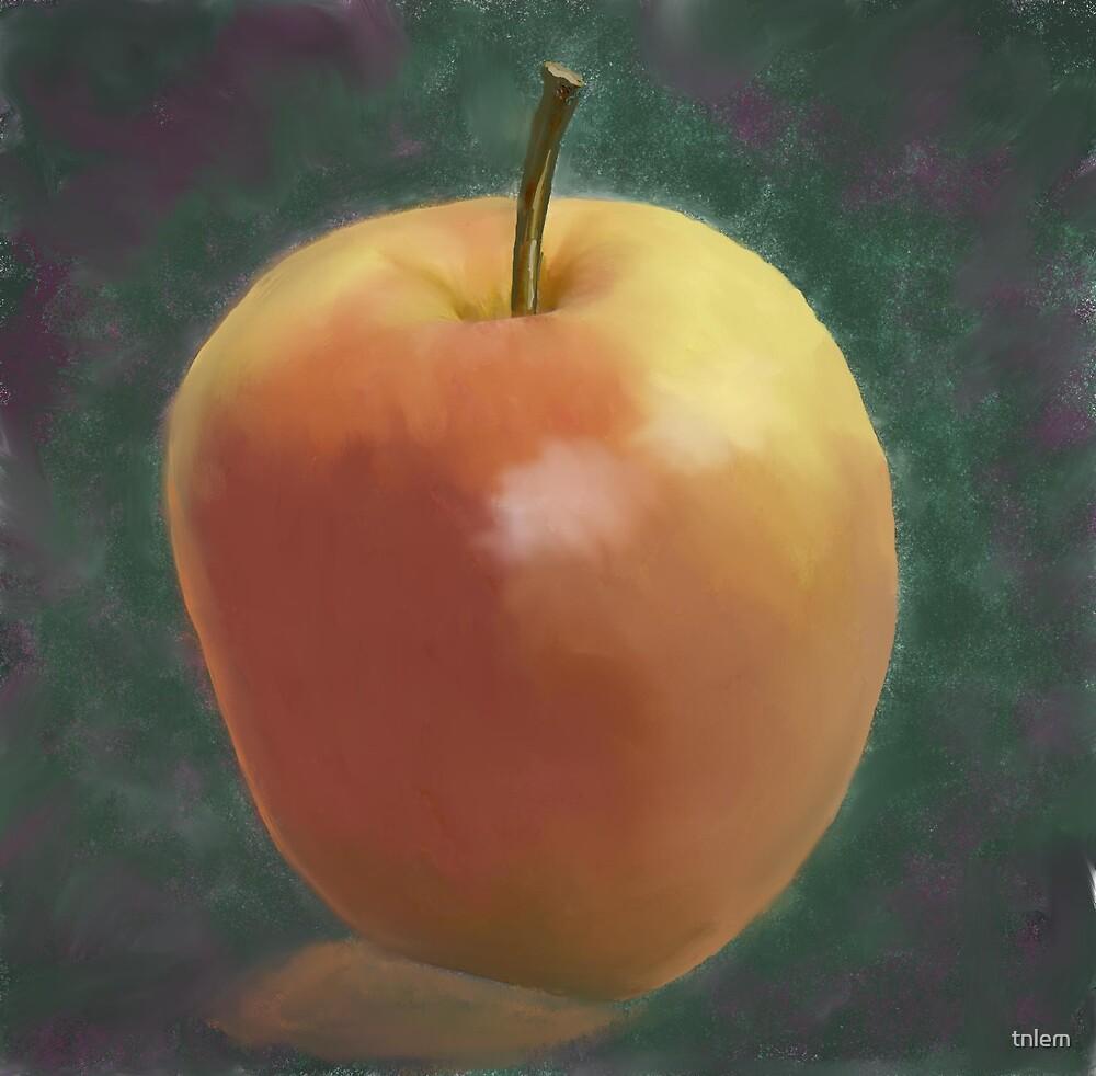 Gala Apple by tnlem