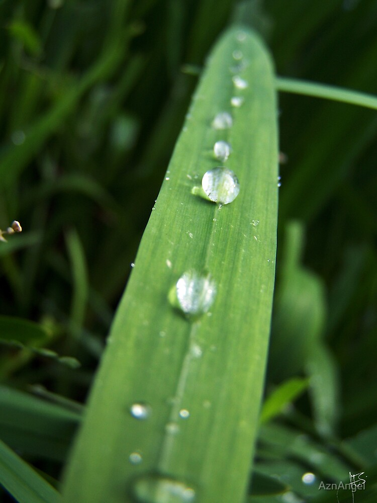 Droplets by AznAngel