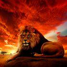 Lion Serengeti  by Cliff Vestergaard