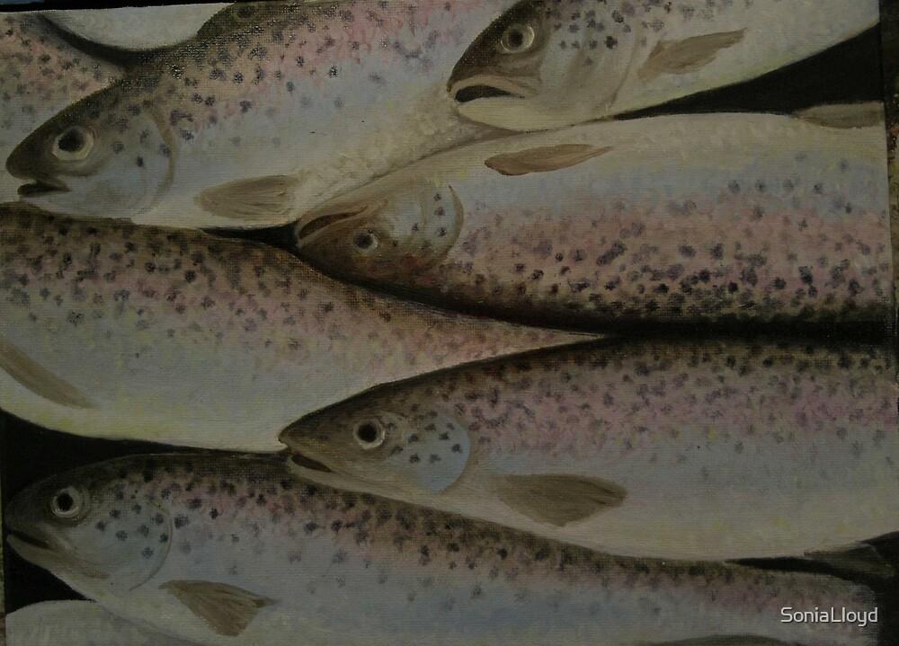 Dead Salmon by SoniaLloyd