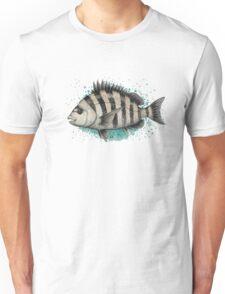 Sheepshead Splash ~ Watercolor Fish Painting by Amber Marine Unisex T-Shirt