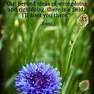 Rumi's Invitation by Tanya B. Schroeder