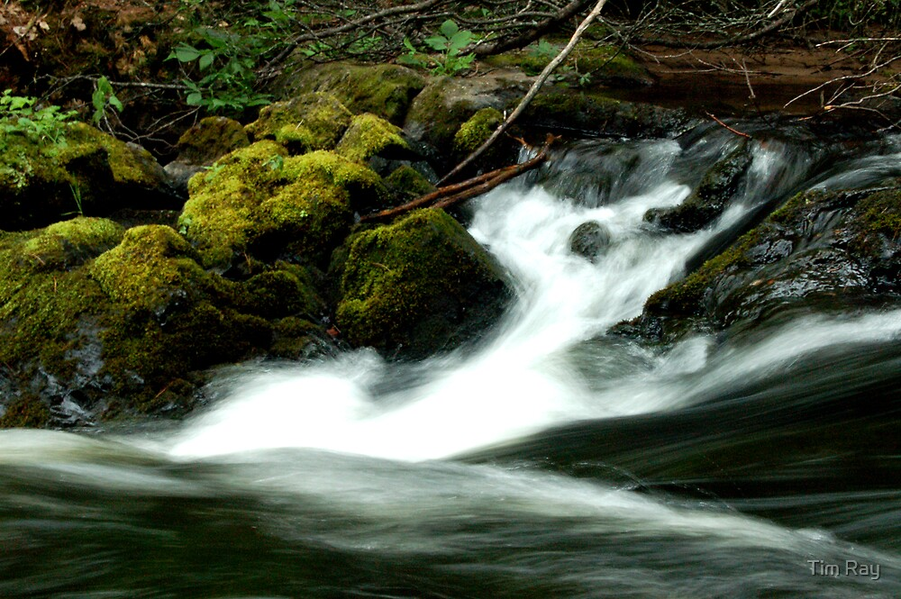 The Flowing Stream by Tim Ray