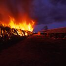 firing the cane - Nth Qld. by Tony Middleton