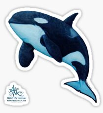 """The Matriarch"" Killer Whale ~ Orca ~ J2 Granny ~ Watercolor Sticker"