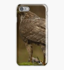 Northern Goshawk - II (Accipiter gentilis) iPhone Case/Skin