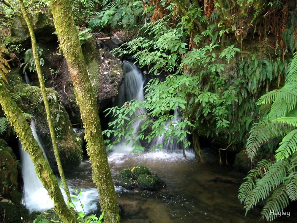 Mini Falls by Hayley