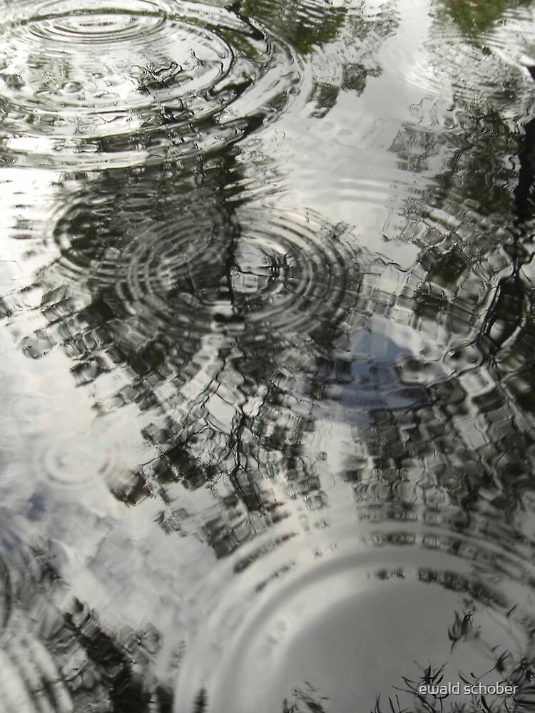 reflection by ewald schober