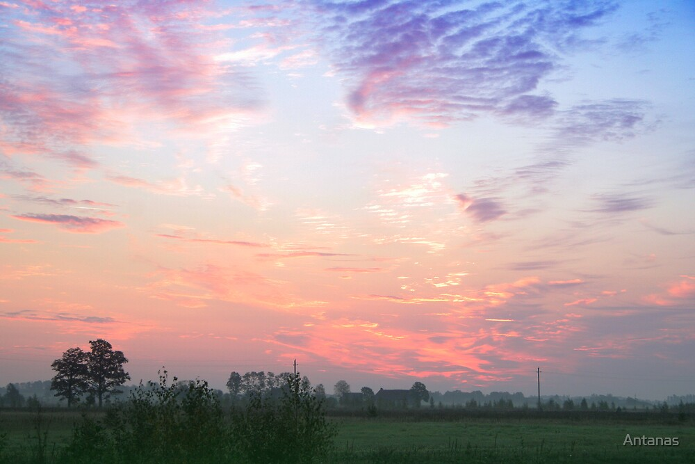 Sunrise in the grassland by Antanas