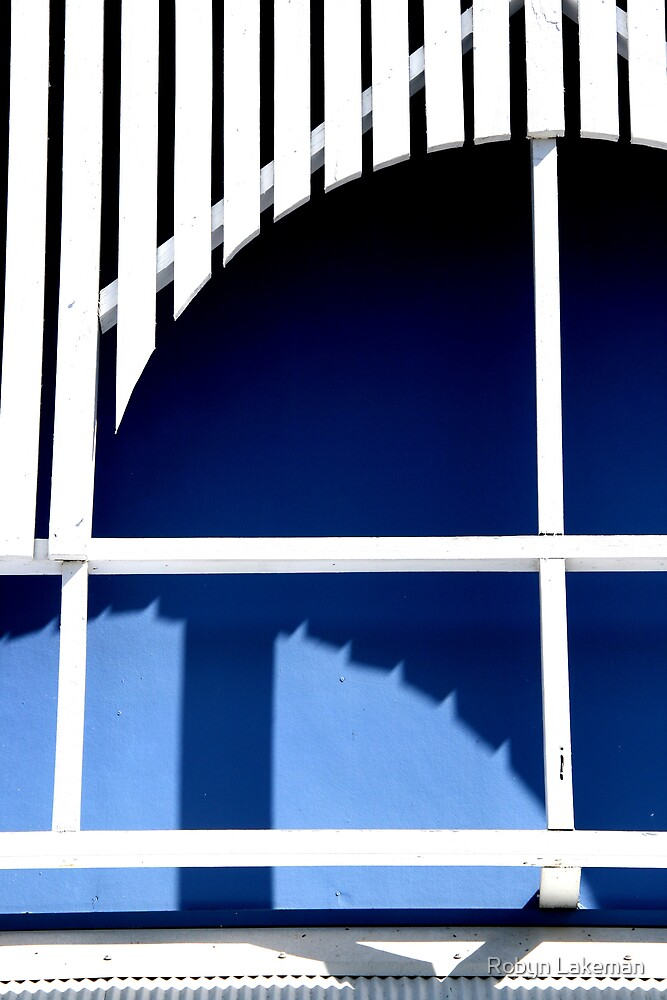 Blue and white by Robyn Lakeman