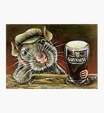 Paddy the rat Photographic Print
