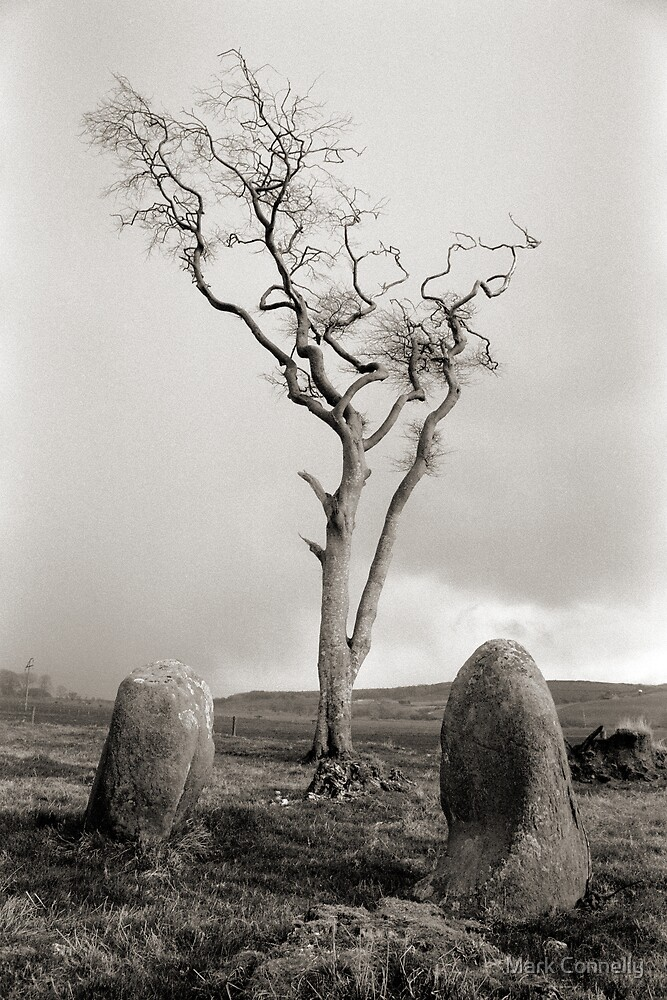 Ettrick Bay Stone Circle by Mark Connelly
