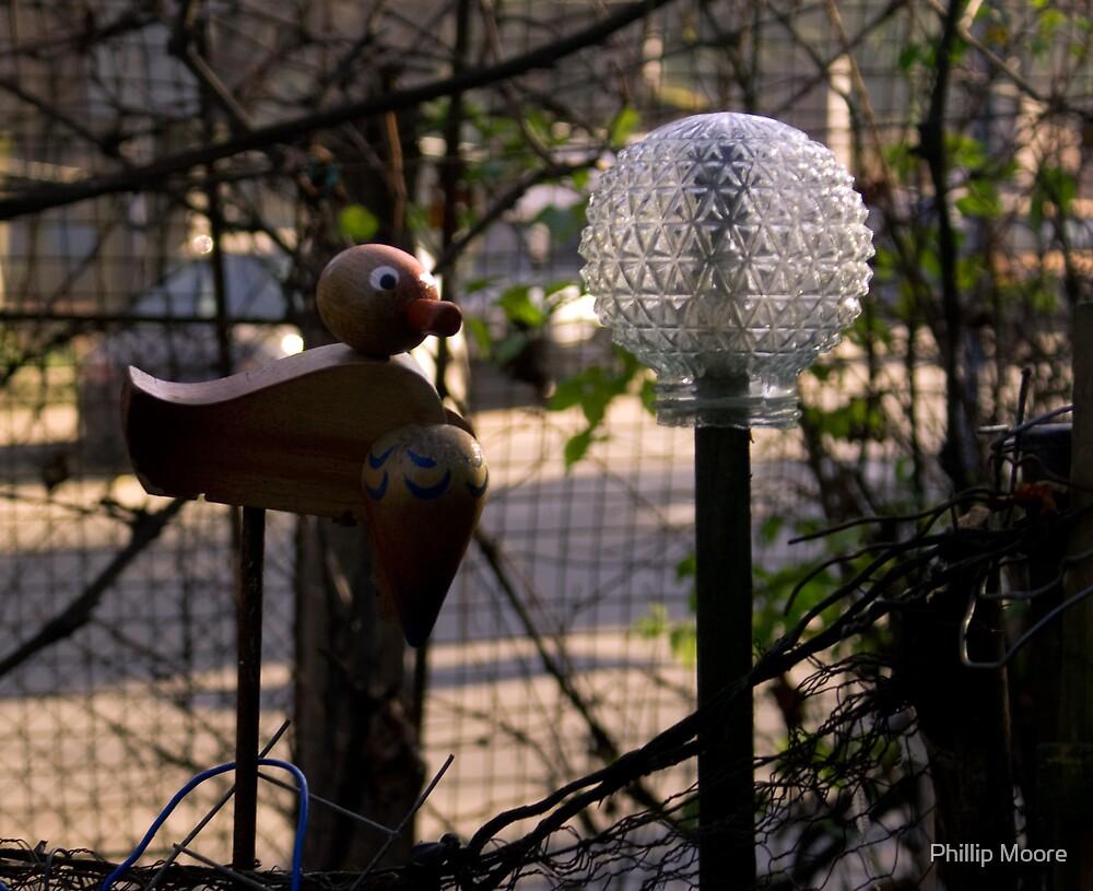 Backyard Art II by Phillip Moore