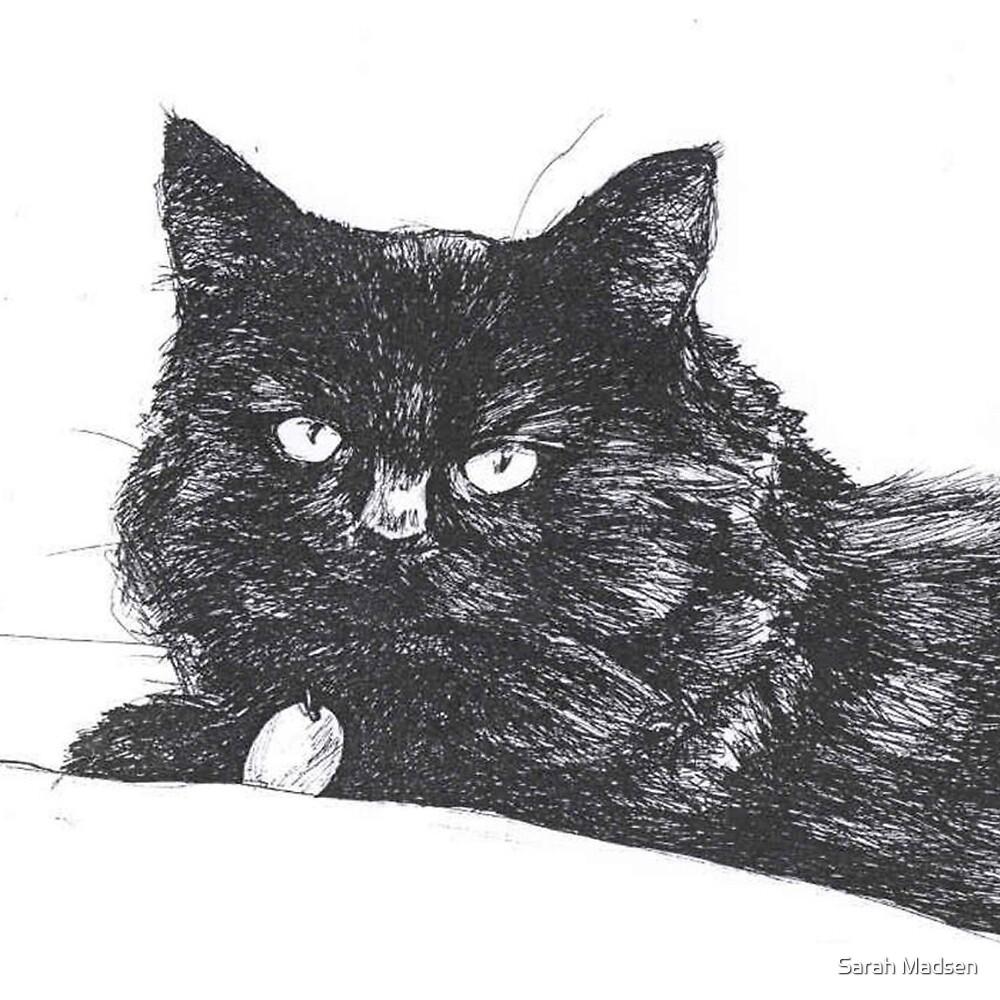 Cat by Sarah Madsen