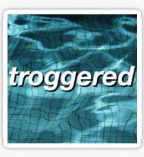 troggered aesthetic  Sticker