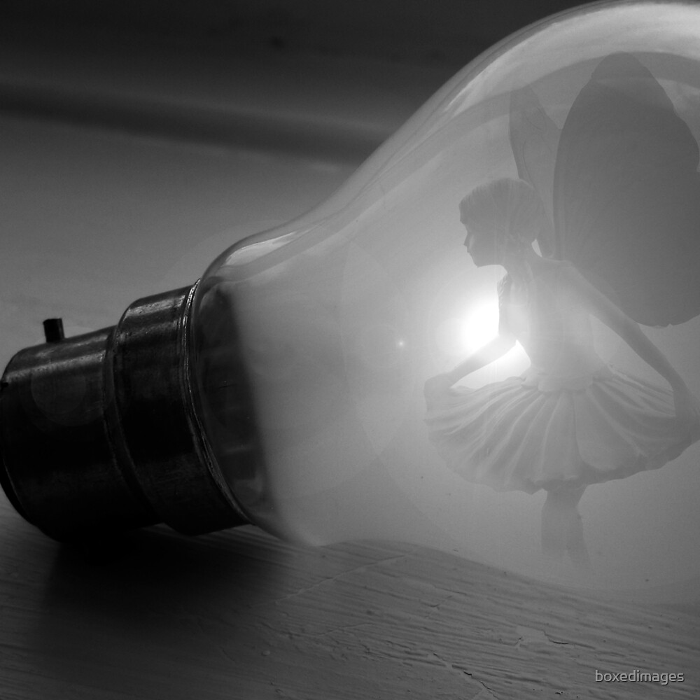 Bulb by boxedimages