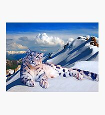 Snow Leopard On The Roof Of The World Photographic Print