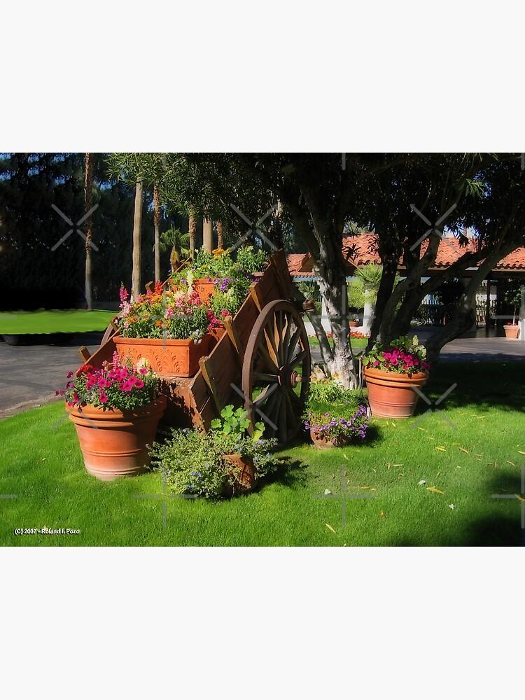 Flower Cart by photorolandi