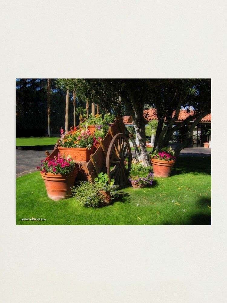 Alternate view of Flower Cart Photographic Print