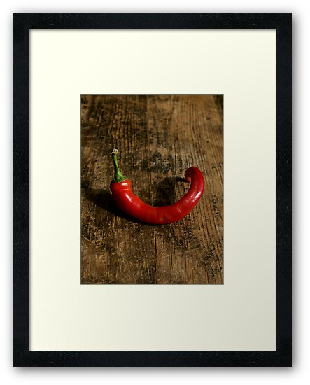 Lone Chili by Barbara Kaplowitz