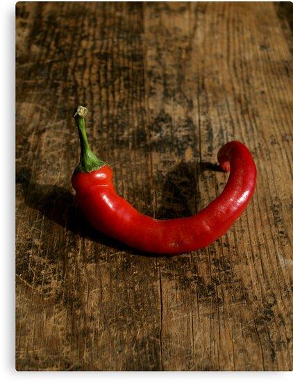 Lone Chili by Barbara Kaplowitz