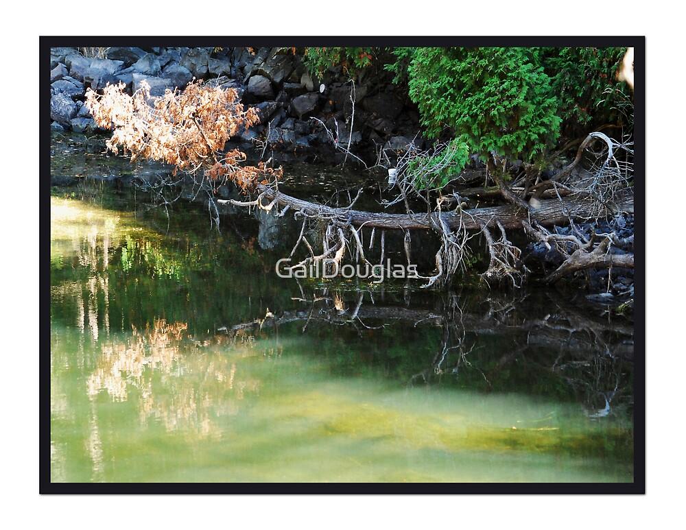 Water Perfect by GailDouglas