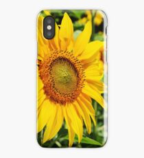 07 - SunFlowers iPhone Case/Skin