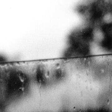 Car Window by colm